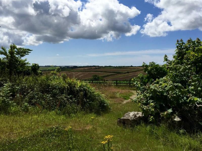 Land To Buy Plot 2 Rear Of Bonallack Trewennack